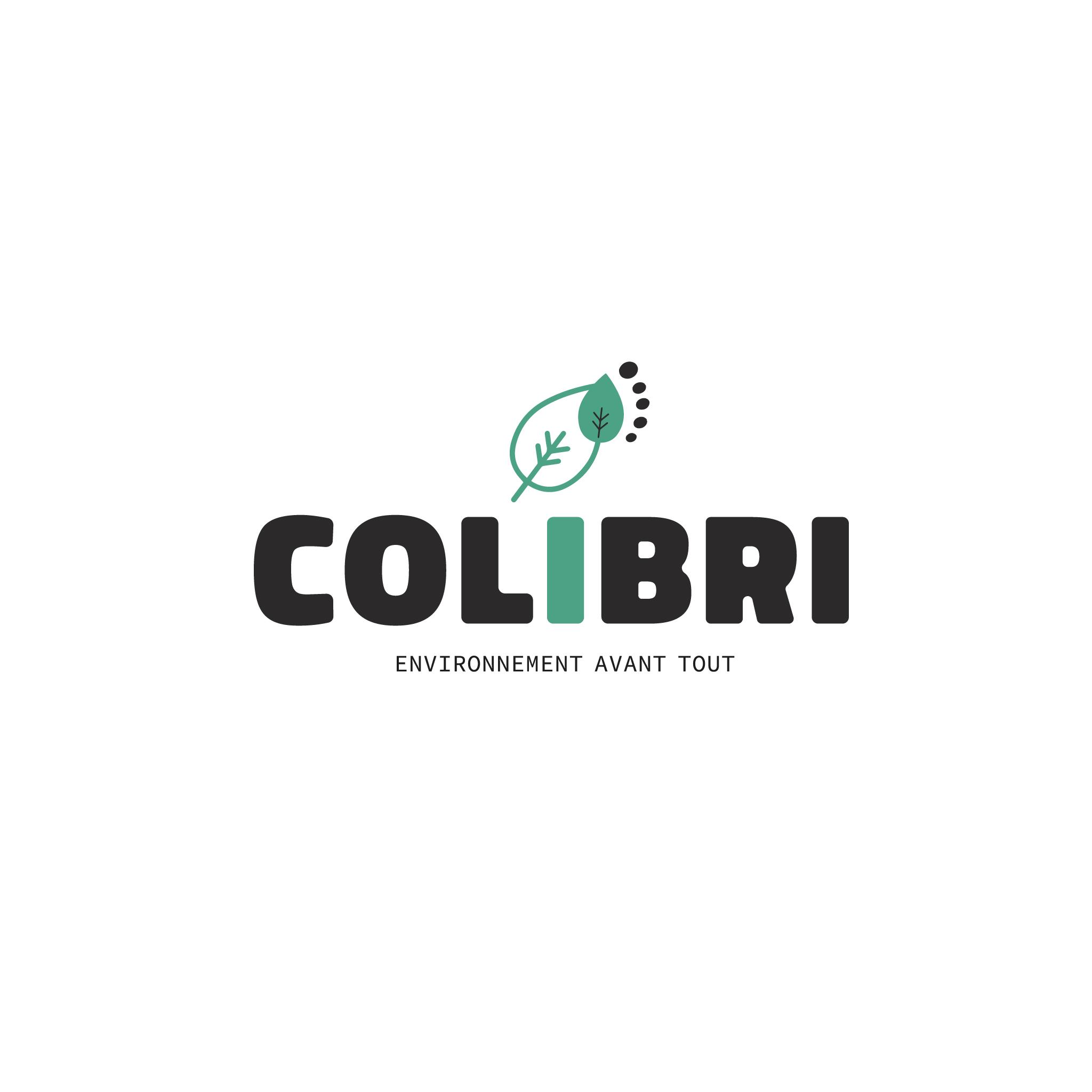 LOGO3-CONCEPT-COLIBRI-PROPO-LWAS